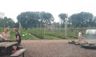 Fruittuin van West Amsterdam