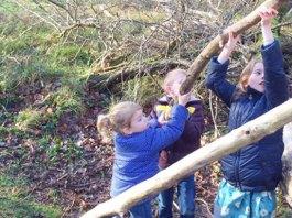 bos hut bouwen