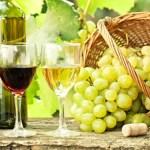 Wijn en spijs, een ideale combinatie voor een romantisch avondje