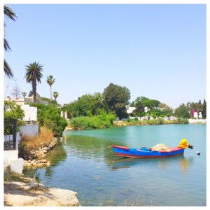 tunis carthago