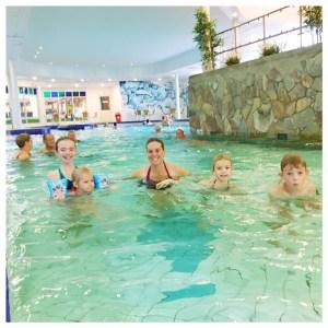 vakantiepark dierenbos zwembad