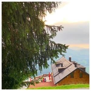 berghut alpenrosehutte