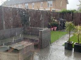regen in aug