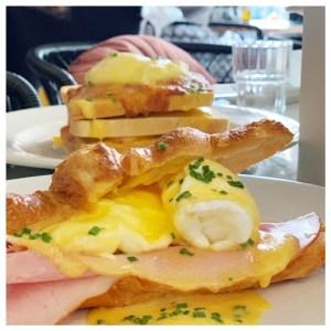 teds eggs benedict