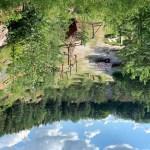 Velka Dohoda, een klimpark en zipline in Tsjechië