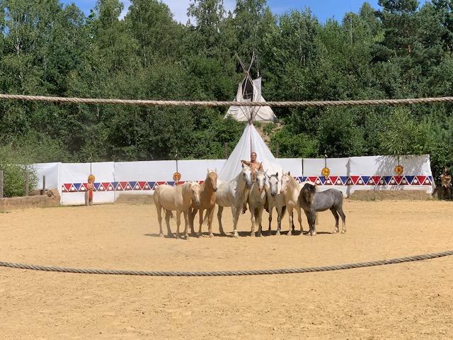 paardenshow western park