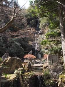 春の三滝寺