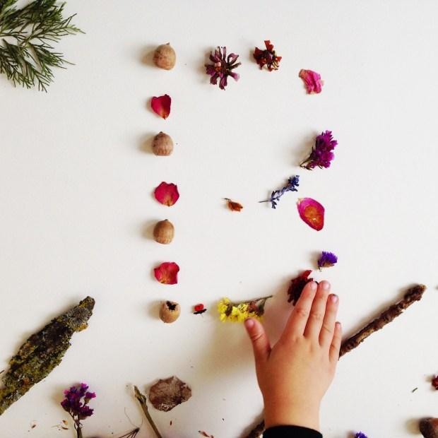botanical advent flower art