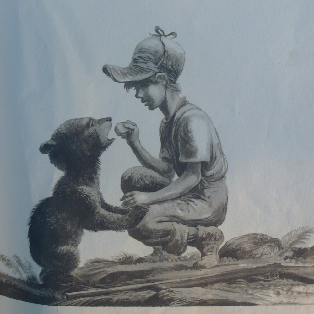 The Biggest Bear and other picture books for older children