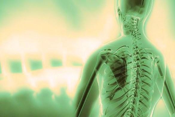 Σπονδυλική Στήλη - Το Μήνυμα του κάθε Σπονδύλου για τη Ζωή μας