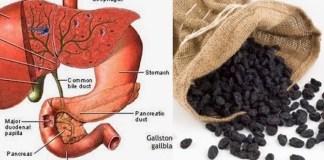 Ελληνική μαύρη σταφίδα & πως καθαρίζει το συκώτι σε μόλις 2 μέρες