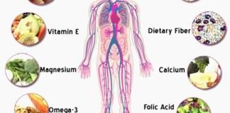 Βιταμίνες: Οι σωματοφύλακες της υγείας (Λίστα)