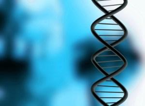 close-up shot of a chromosone