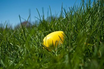 Single painted Easter Egg in Grass