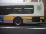 Back half of a city bus on street