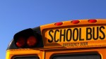 school bus back, close up of top against bright blue sky