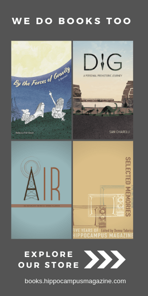ad for books website - covers of hippocampus' four books