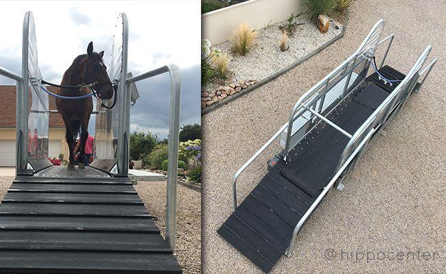 tapis roulant pour chevaux haut de