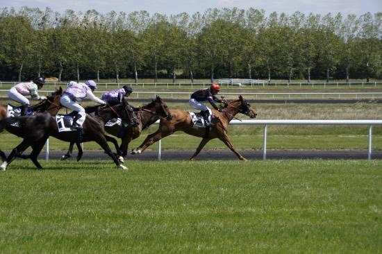 2eme course - Hippodrome Chatillon sur Chalaronne