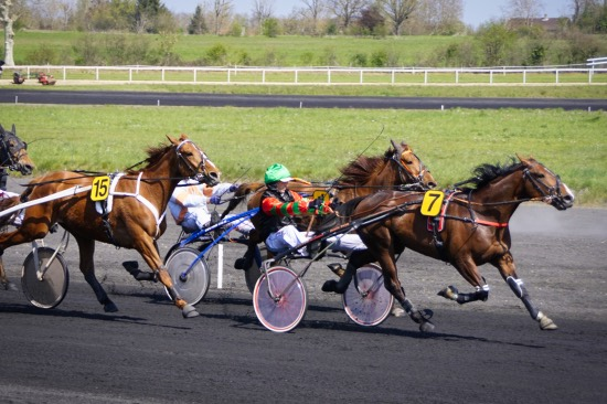 14_04 - hippodrome_Chatillon_sur_chalaronne_14_04_2019_DSC3301.jpg