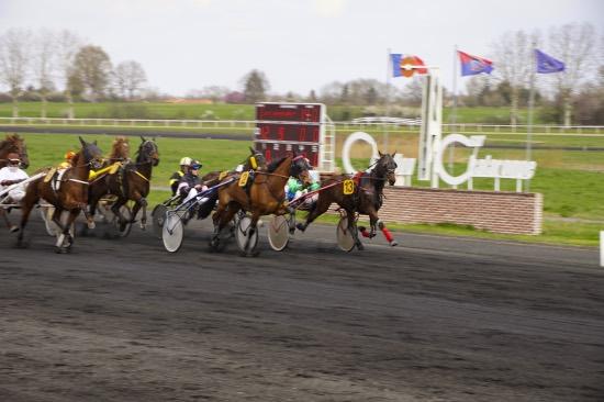 Hippodrome Chatillon sur Chalaronne - course 25/03/2019 - Photo 3