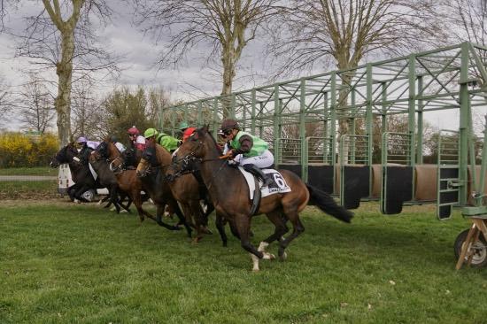 Hippodrome Chatillon sur Chalaronne - course 25/03/2019 - Photo 27