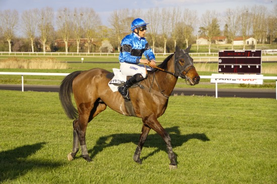 Hippodrome Chatillon sur Chalaronne - course 25/03/2019 - Photo 54