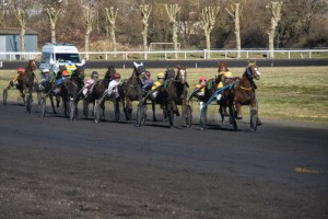 COURSES - Hippodromme_Bel_Air_24_2_2020_COURSES_4