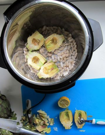 Looking down on Instant Pot electric pressure cooker with beans and water in the base, and cleaned artichoke halves on top of that with their cut-side up.