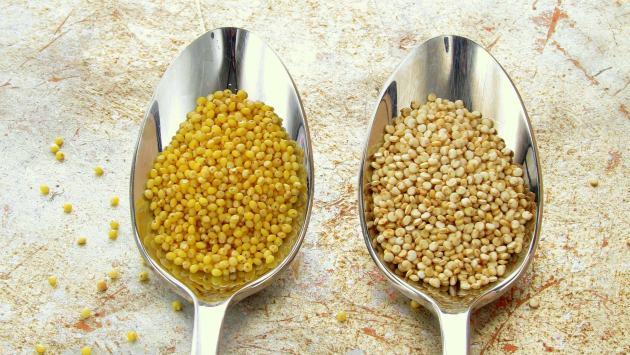 Millet vs. Quinoa