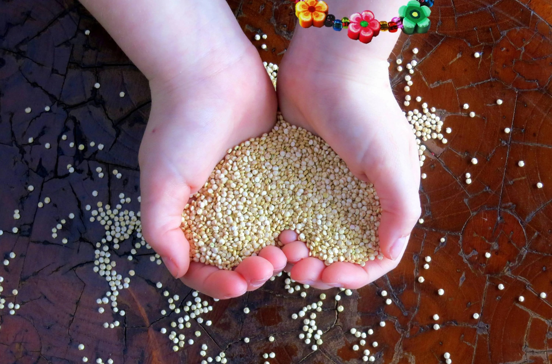 Pressure Cooking Quinoa Boosts Antioxidants, Study Says
