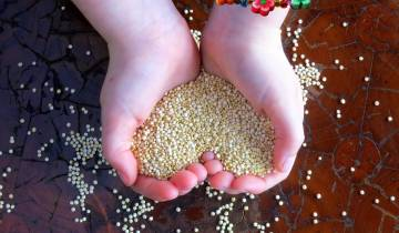 Pressure Cooked Quinoa is MORE nutritious!