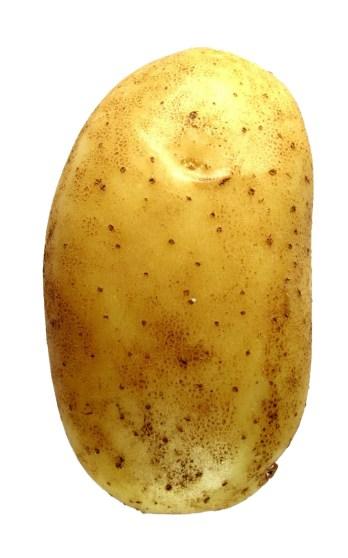 potato_1V