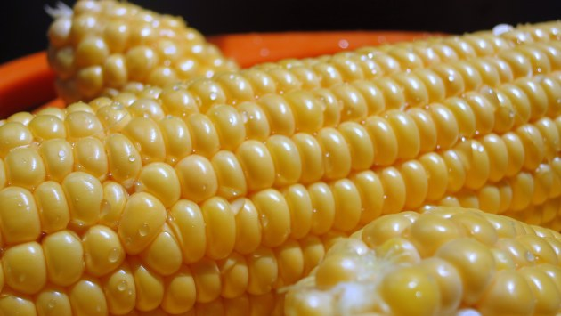 Give the husked corn a quick rinse before pressure cooking.