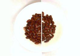 Pressure Cooking DRY versus SOAKED Beans