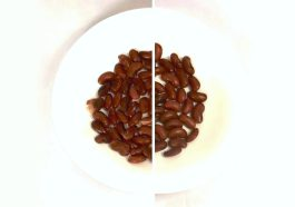 Pressure Cooking DRY versus SOAKED Beans
