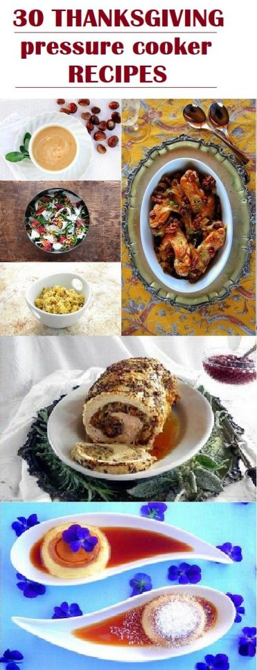 30 Thanksgiving Instant Pot  and Pressure Cooker RECIPE ideas!!
