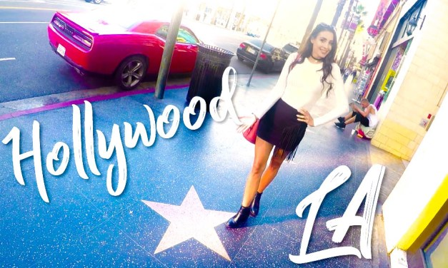 LA ARRIVAL & HOLLYWOOD BLVD