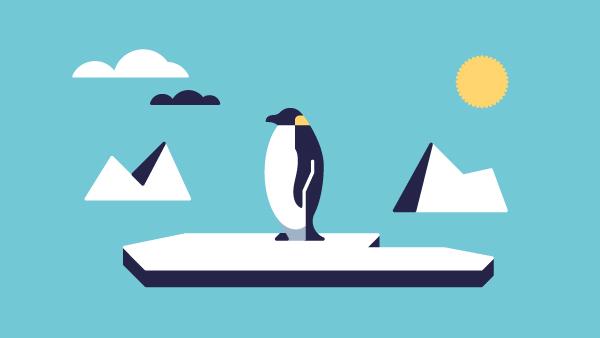 Penguin_SunAnim_FM