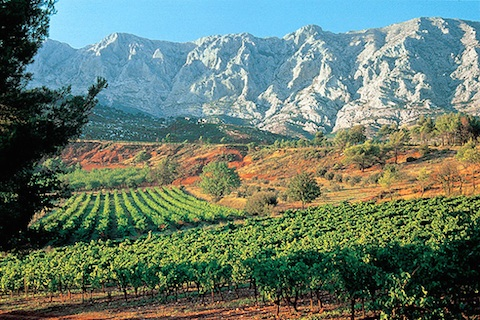 Provence: Mt. St. Victoire and vineyards
