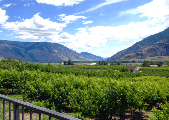 The Similkameen Valley. looking east from Corcelettes Winery