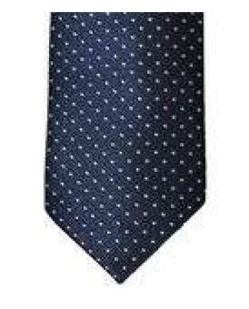 Mens Cavani Navy White Polka Dot Tie Pocket Square & Tie Pin Set - Accessories