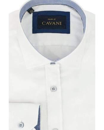 Mens Classic Collar White Herringbone Shirt by Cavani - Shirts