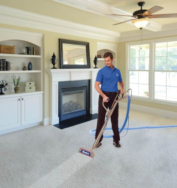 How to Deep Clean Your Carpet | HireRush Blog