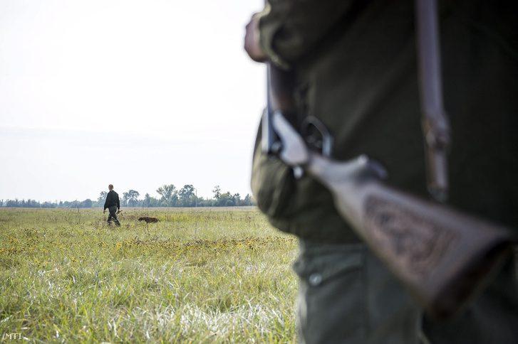 Vadász lőtt le egy gazdájával sétáló kutyát Budapesten