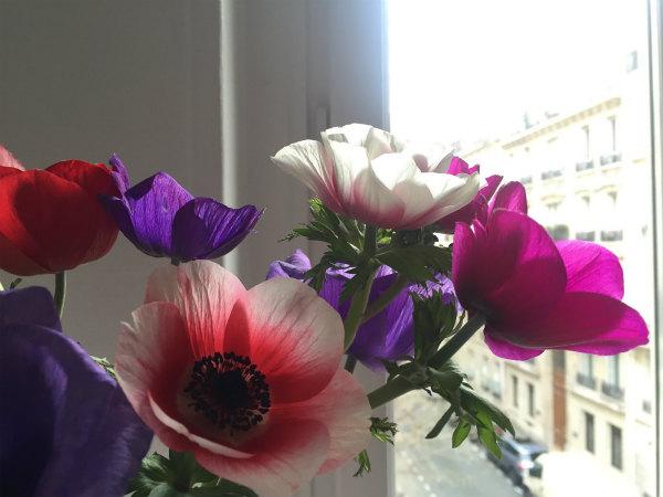 パリ、3月の花屋さん