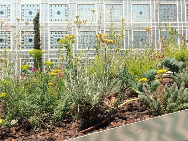 つかのまの庭、オリエントの庭園展、パリにて[続]