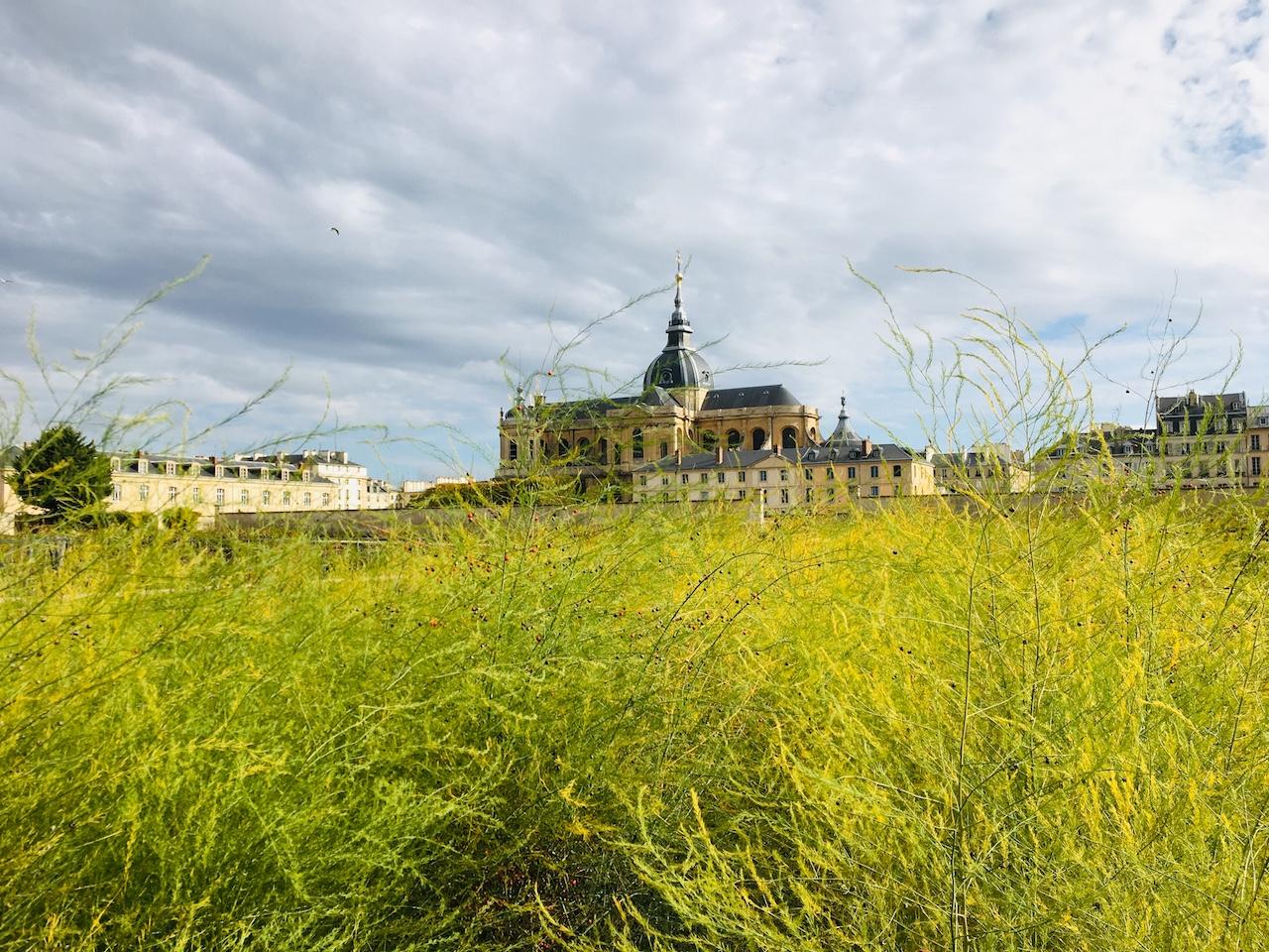 王の菜園 ポタジェデュロワ