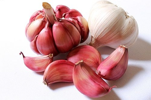 Garlic for Acne Scars