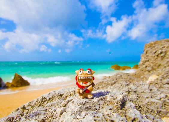 「沖縄」の画像検索結果